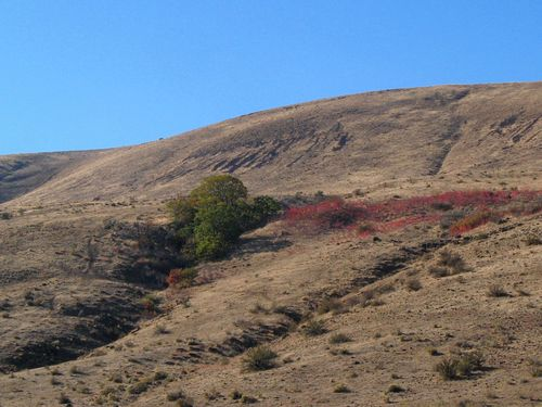 73a October Stratovolcano Loop 10.19-21.14_028