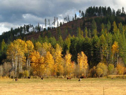 70 October Road Trip 2012 10.14-19.12_363