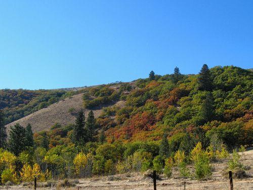 73d October Stratovolcano Loop 10.19-21.14_036