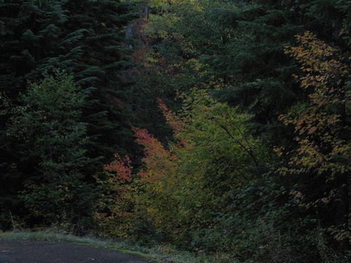 83 October Stratovolcano Loop 10.19-21.14_108